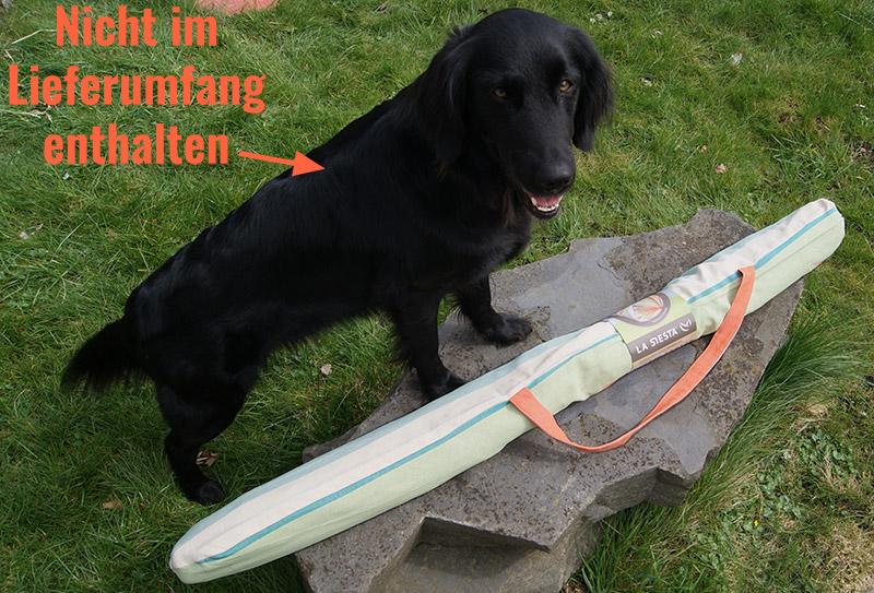 Schwarzer Hund steht vor dem verpackten Lounger Domingo Hängesessel