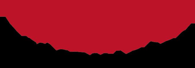 Chico Hängesessel Logo